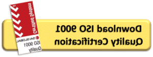 ISO 9001认证 .PDF
